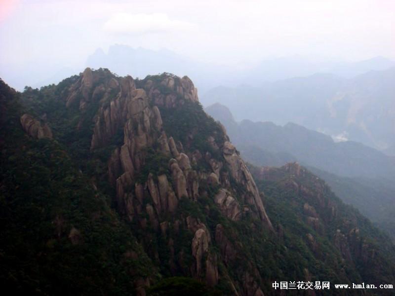 仙路春-不过那天的雾大有的景色不那么艳丽、清晰.您可能要问走多长的路...